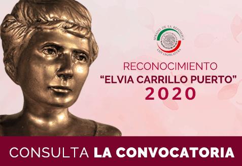 Reconocimiento Elvia Carrillo Puerto, del Senado de la República