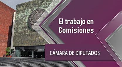 Sigue los trabajos de la Comisiones Cámara de Diputados