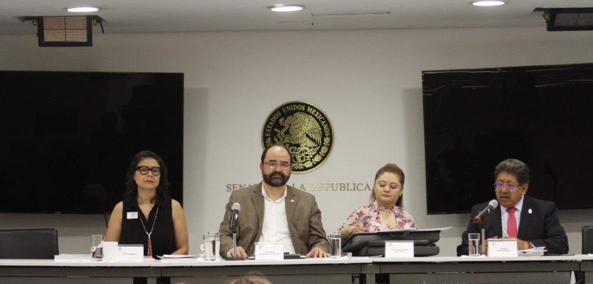 Analizan+en+Parlamento+Abierto+Ciudadano%2C+las+leyes+secundarias+de+la+Guardia+Nacional