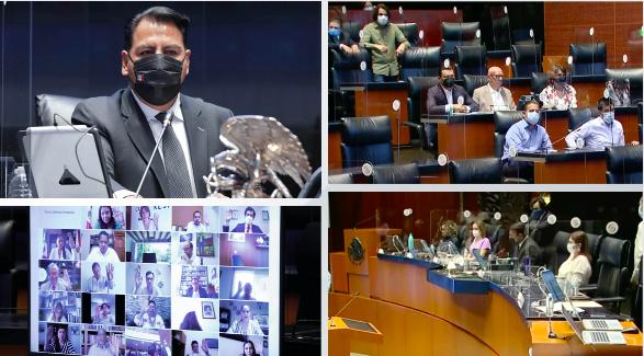 Debaten+senadores+art%C3%ADculo+transitorio+relativo+a+la+presidencia+de+la+SCJN+en+Reforma+Judicial+