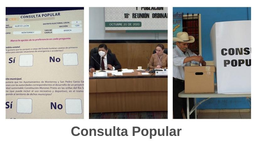 +Comisi%C3%B3n+de+Diputados+aprueba+convocatoria+de+Consulta+Popular+