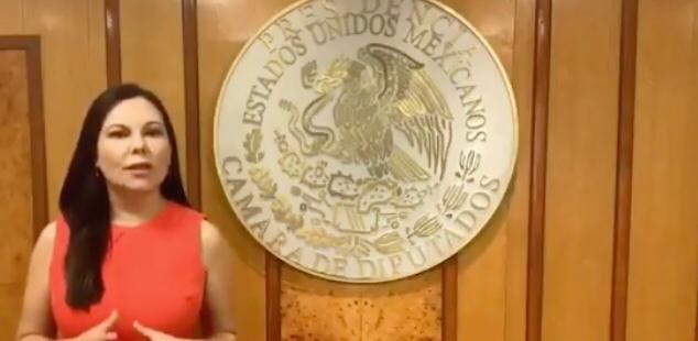 Presidenta+de+la+C%C3%A1mara+de+Diputados+llama+a+implementar+sesiones+virtuales+para+atender+emergencia+sanitaria++