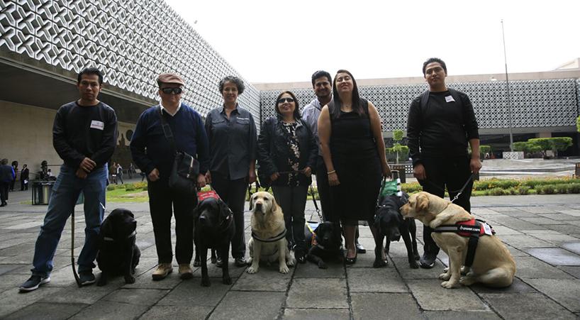 Expiden+ley+de+derechos+de+usuarios+de+perros+gu%C3%ADa+y+animales+de+servicio