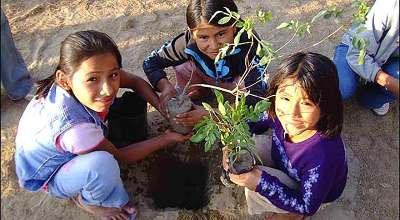 Departen+sobre+proyectos+de+manejo+de+residuos+y+desarrollo+sustentable