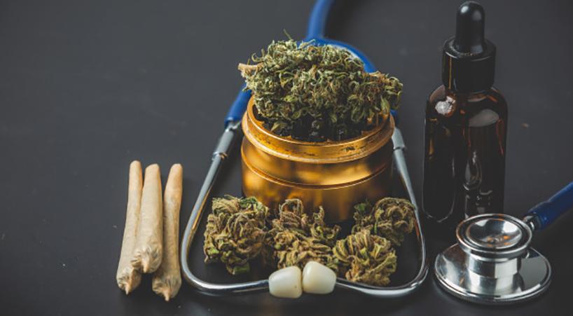 Destacan+importancia+de+regularizar+el+cannabis+para+beneficiar+al+campo+++