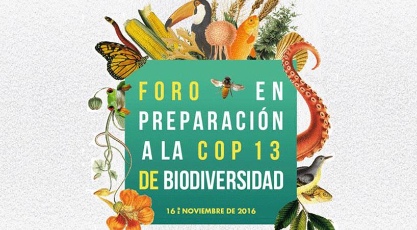 Se+preparan+diputados+rumbo+a+la+COP+13