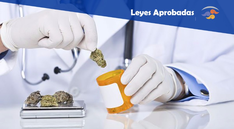 El+Senado+de+la+Rep%C3%BAblica+aval%C3%B3+la+regulaci%C3%B3n+de+uso+medicinal+y+terap%C3%A9utico+de+la+marihuana