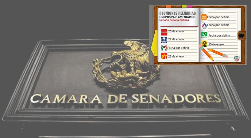 Bancadas+del+Senado+de+la+Rep%C3%BAblica+realizar%C3%A1n+reuniones+plenarias+a+distancia+
