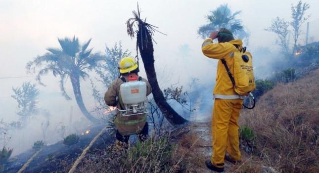 Exhortan+a+Semarnat+a+fortalecer+las+medidas+de+combate+y+prevenci%C3%B3n+de+los+incendios+forestales+