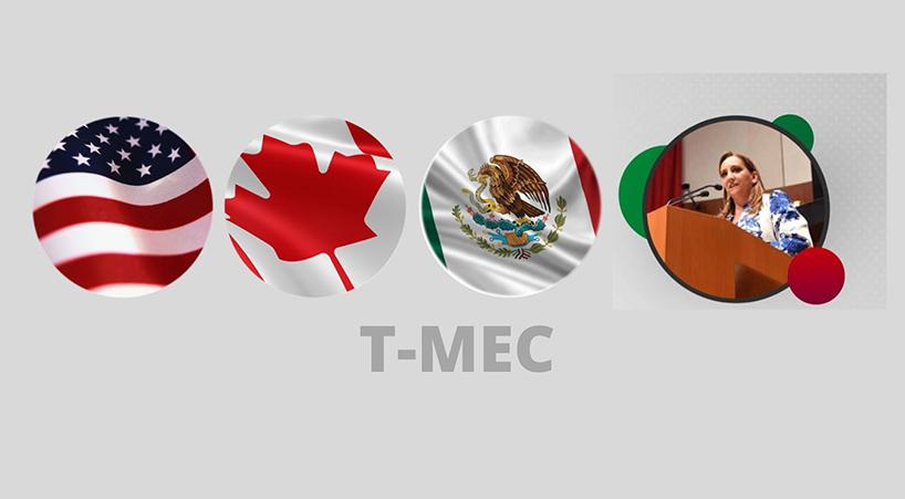 Presidenta+de+la+Comisi%C3%B3n+de+Seguimiento+al+T-MEC+reconoce+trabajo+legislativo