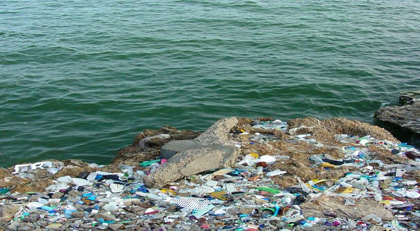 Acciones+para+evitar+contaminaci%C3%B3n+del+mar+por+vertimiento+de+desechos