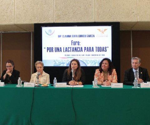 Legisladoras+y+especialistas+buscan+estrategias+para+visibilizar+y+difundir+la+importancia+de+la+lactancia+materna.