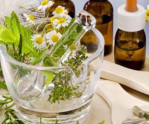 Investigadores+destacan+en+foro+aprovechamiento+de+plantas+medicinales.